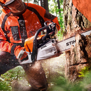 Chainsaws & Tree Care